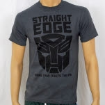 1981 Straight Edge Clothing More Than Meets The Eye Gray T-Shirt