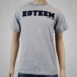 Esteem Reunion Gray T-Shirt