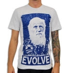 Venus Fallen Evolve Grey T-Shirt